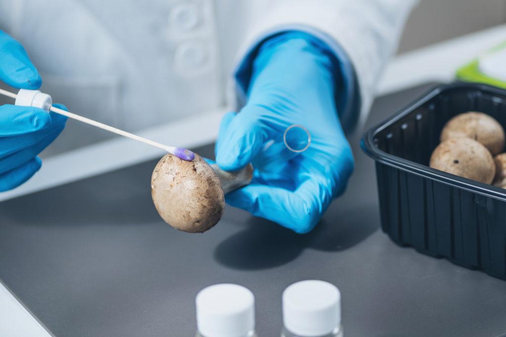 Pestizide auf Gemüse analyse im Labor