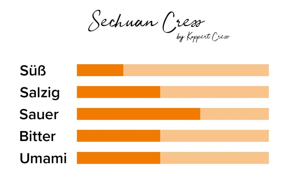Geschmack von Kresse Sechuan Cress